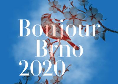 Vizuál 2020